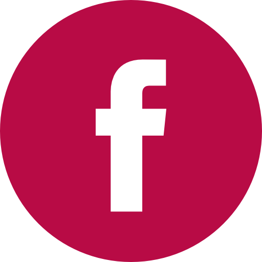 facebook logo button